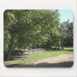 Pinnacle Point Mouse Pad