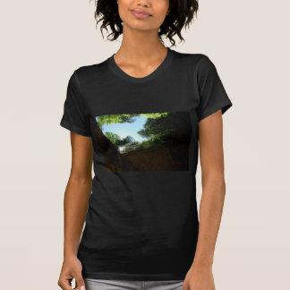 Pinnacle T-Shirt