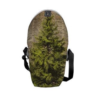 Pino, árbol de cedro, arte del diccionario del bolsas de mensajería