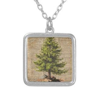 Pino, árbol de cedro, arte del diccionario del colgante cuadrado
