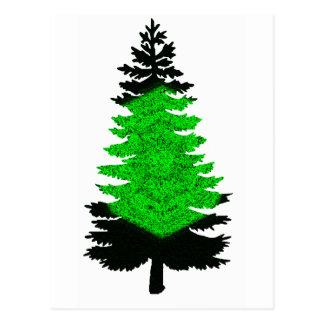 Pino de la aurora boreal tarjeta postal