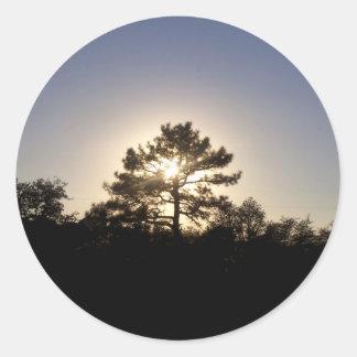 Pino de la puesta del sol pegatina redonda
