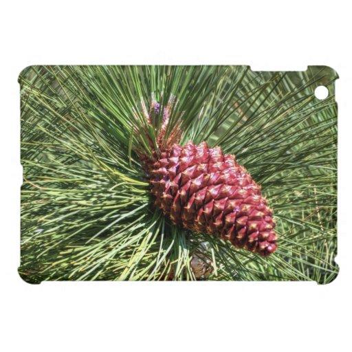 Pino hermoso iPad mini coberturas