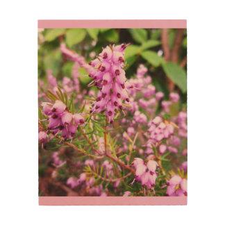 Pino rosado cuadro de madera