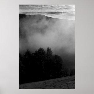 Pinos en la niebla posters