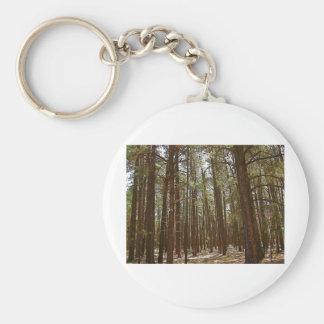 pinos llavero redondo tipo pin