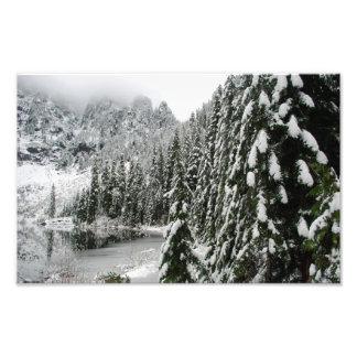 Pinos Nevado a lo largo del lago veintidós Arte Con Fotos
