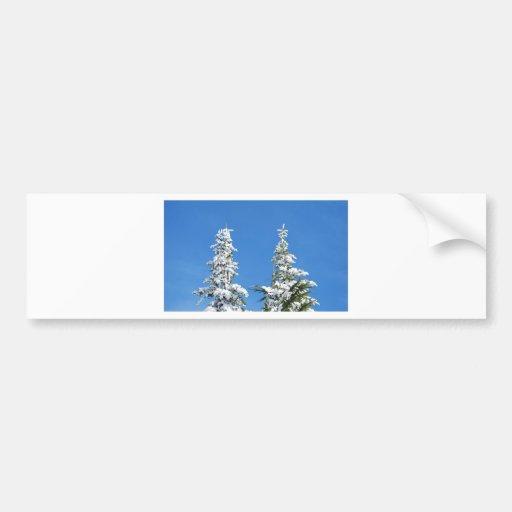 Pinos nevados etiqueta de parachoque