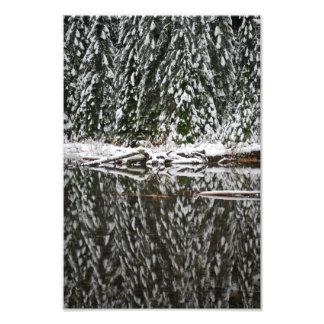 Pinos nevados que reflejan en el lago 22 foto