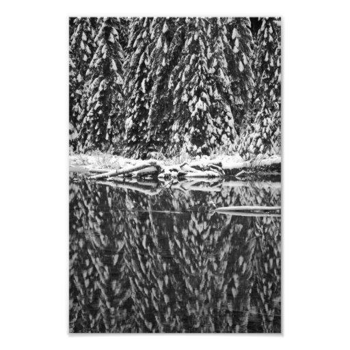 Pinos nevados que reflejan en el lago 22 fotografía
