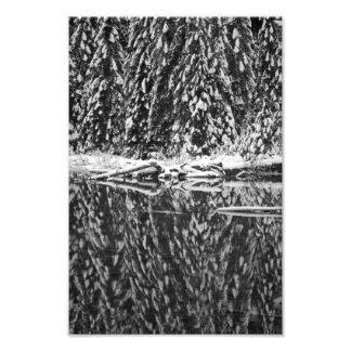 Pinos nevados que reflejan en el lago 22 arte fotografico