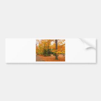 Pinos y árboles imperecederos del otoño pegatina de parachoque