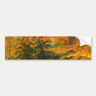 Pinos y árboles imperecederos del otoño pegatina para auto