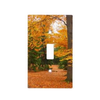 Pinos y árboles imperecederos del otoño placas para interruptor