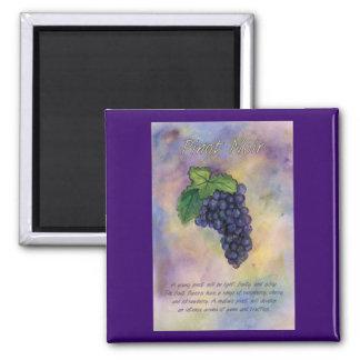Pinot Noir Wine Grapes Magnet