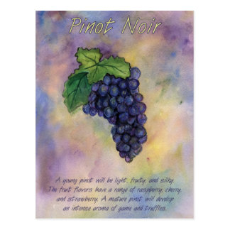 Pinot Noir Wine Grapes Postcard