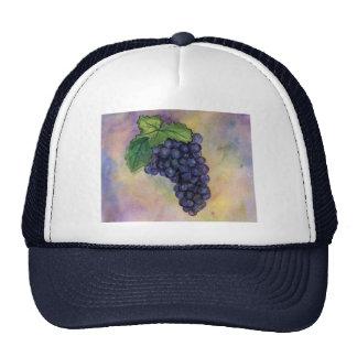 Pinot Noir Wine GrapesHat Trucker Hat