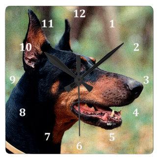 Pinscher del Doberman en las maderas Reloj Cuadrado