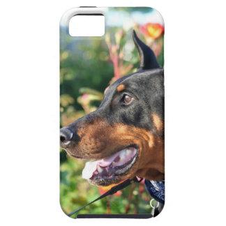 Pinscher del Doberman iPhone 5 Case-Mate Cobertura