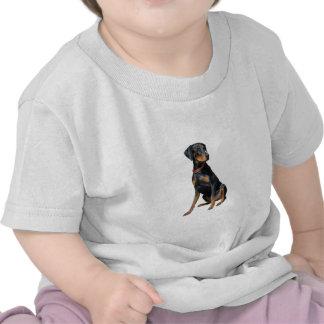 Pinscher del Doberman (natural) Camisetas