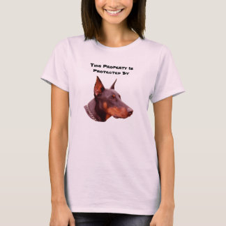 Pinscher del Doberman protegido por la camiseta