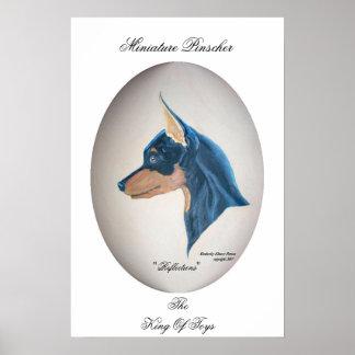 Pinscher miniatura póster
