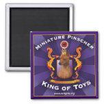 Pinscher miniatura, rey de juguetes imán cuadrado