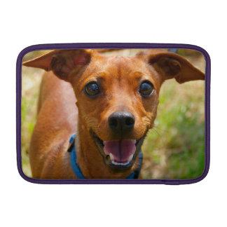 Pinscher Smiling Blue Collar Dog MacBook Sleeves