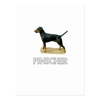 Pinscher Postal