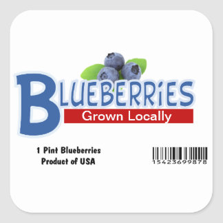 Pint Blueberry Stickers