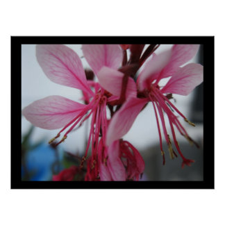 Pint Flowers Print
