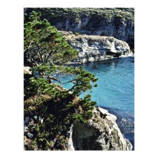 """Pinta. Coto del estado de Lobos Folleto 8.5"""" X 11"""""""