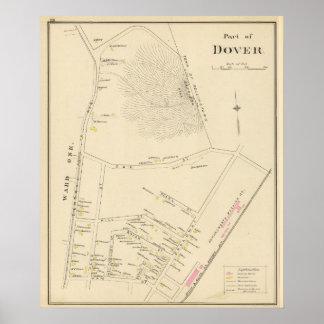 Pinta de Dover Póster