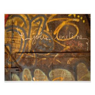 Pintada Brooklyn NYC Cojinete
