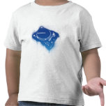 Pintada Stanton STR8-150 - placa giratoria de la Camiseta