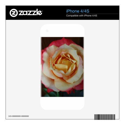 Pintado color de rosa skins para iPhone 4