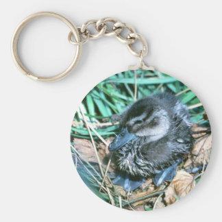 Pintail Chick Basic Round Button Keychain