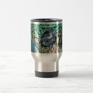 Pintail Chick Coffee Mug