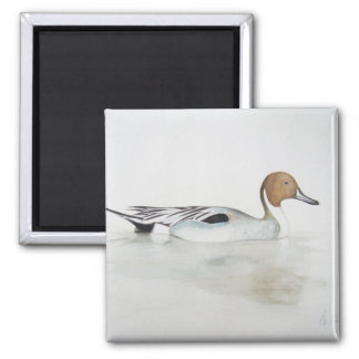 Pintail Duck 2011 2 Inch Square Magnet