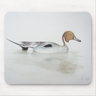 Pintail Duck 2011 Mouse Pad