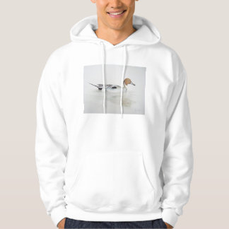 Pintail Duck 2011 Pullover