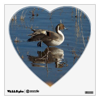 Pintail Duck Bird Wall Decal