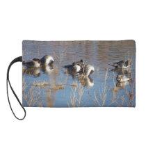 Pintail Duck Birds Wildlife Animals Pond Bag