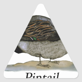 Pintail duck, tony fernandes triangle sticker