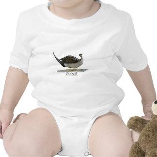 Pintail duck, tony fernandes bodysuits