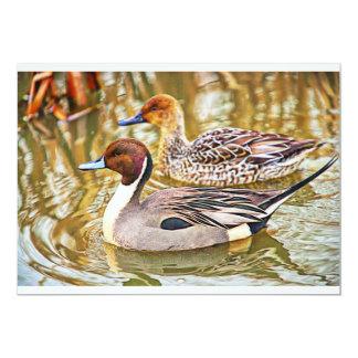 Pintail ducks 5x7 paper invitation card