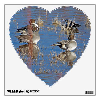 Pintail Ducks Birds Wall Decal