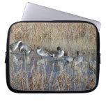 Pintail Ducks Laptop Sleeve