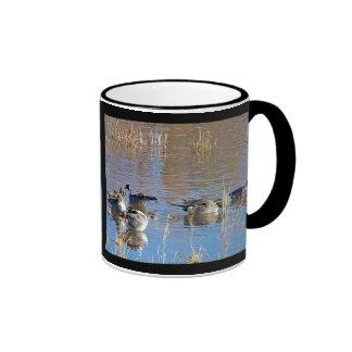 Pintail Ducks Mug