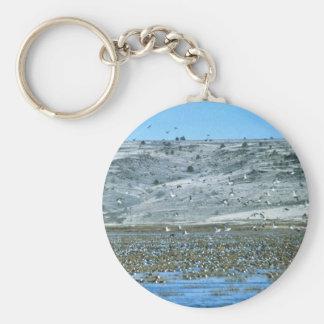 Pintail Flock Basic Round Button Keychain